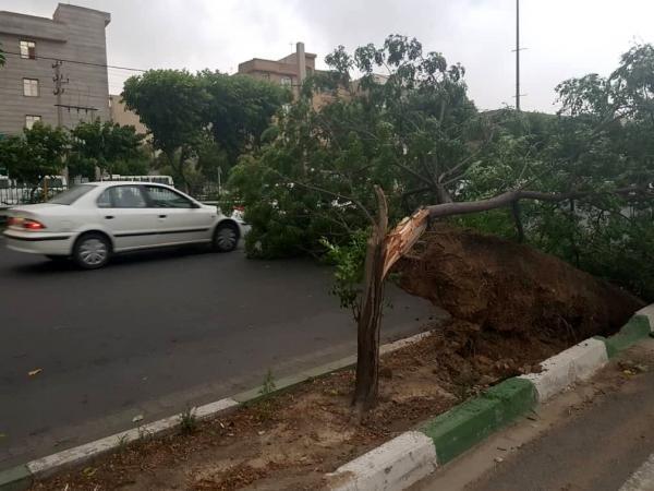 هشدار؛ وزش باد خیلی شدید در چند استان